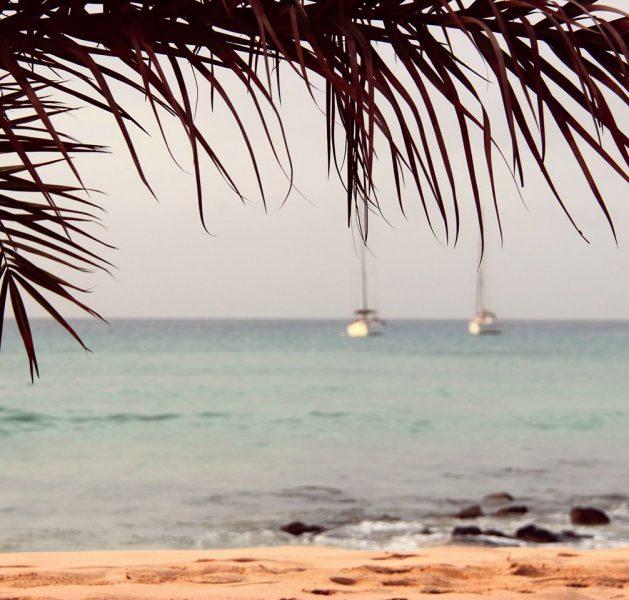 Cabo Verde Tourism Awards: os melhores do arquipélago vão ser eleitos
