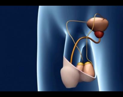 Infertilidade: Nova técnica duplica êxito do tratamento