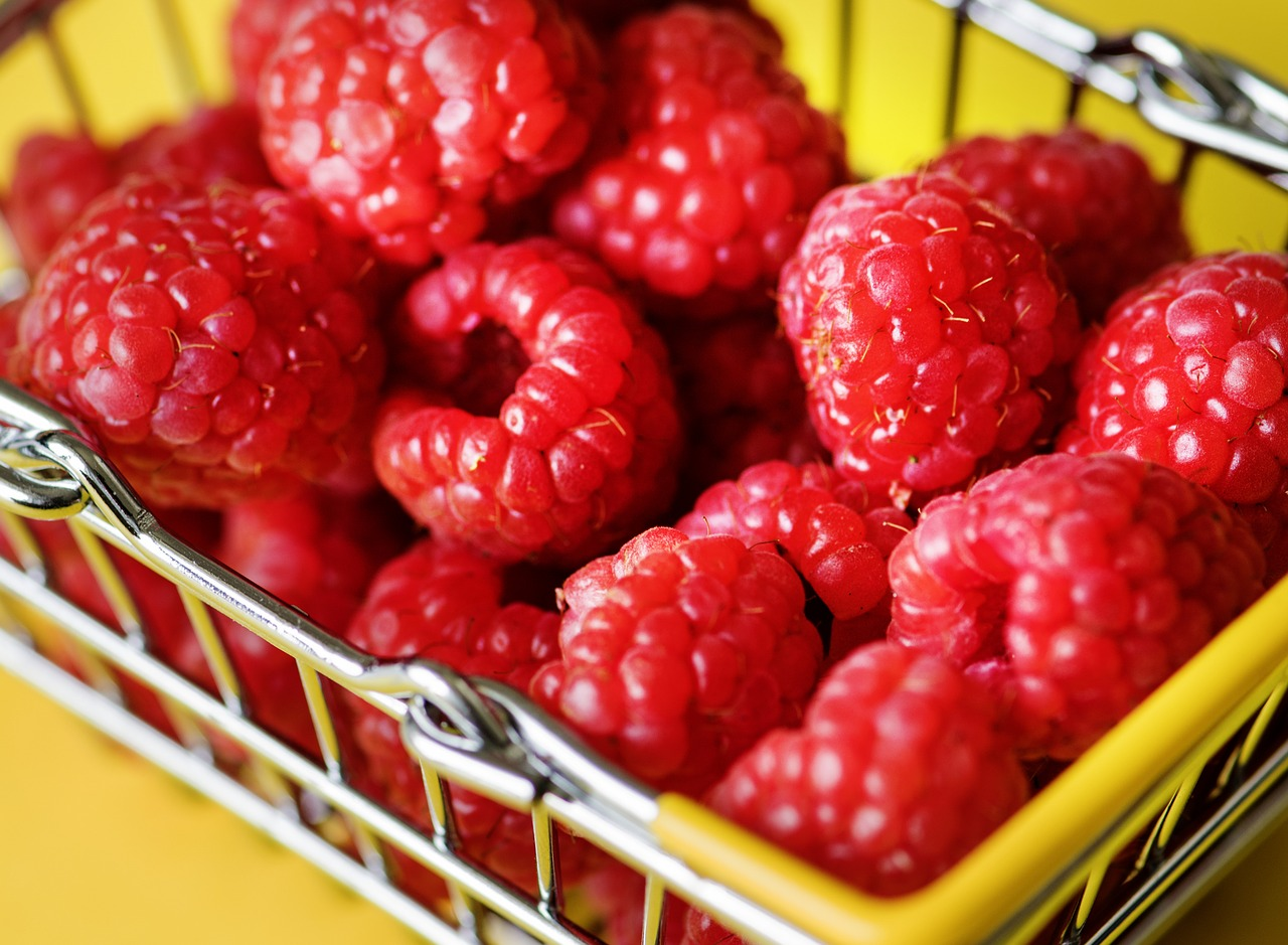 basket-3605373_1280