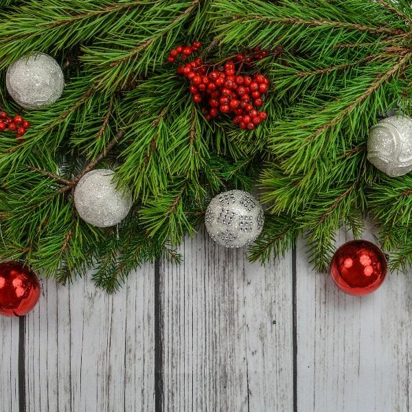 Férias de Natal: 15 atividades para fazer com os mais pequenos