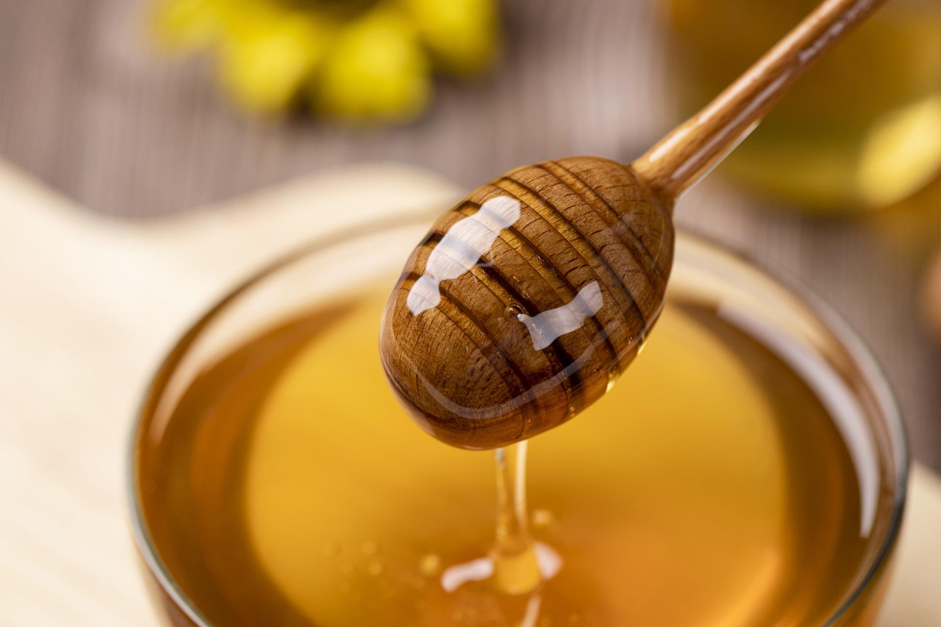 honey-4770245_1920